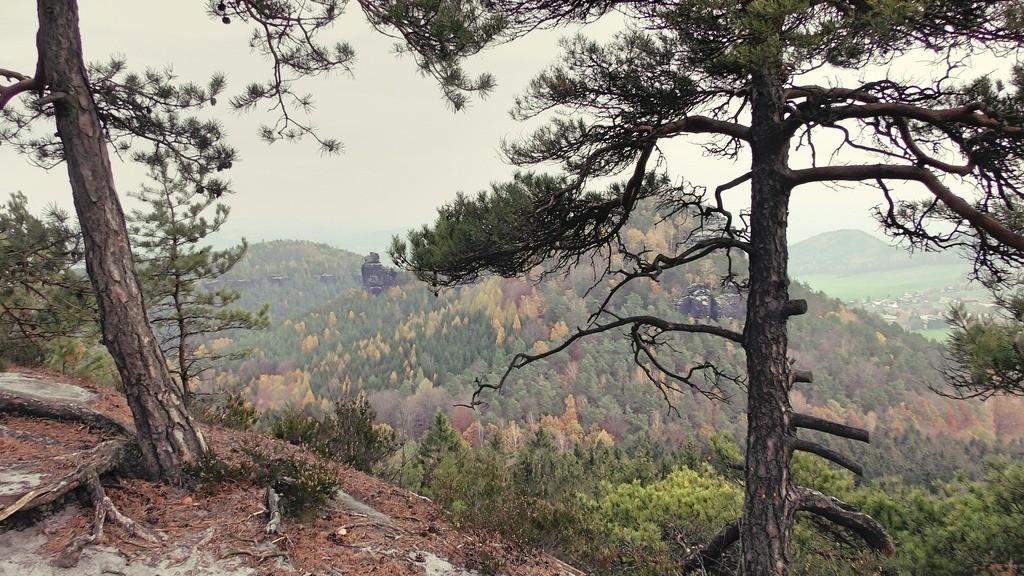 Elbsandsteingebirge III