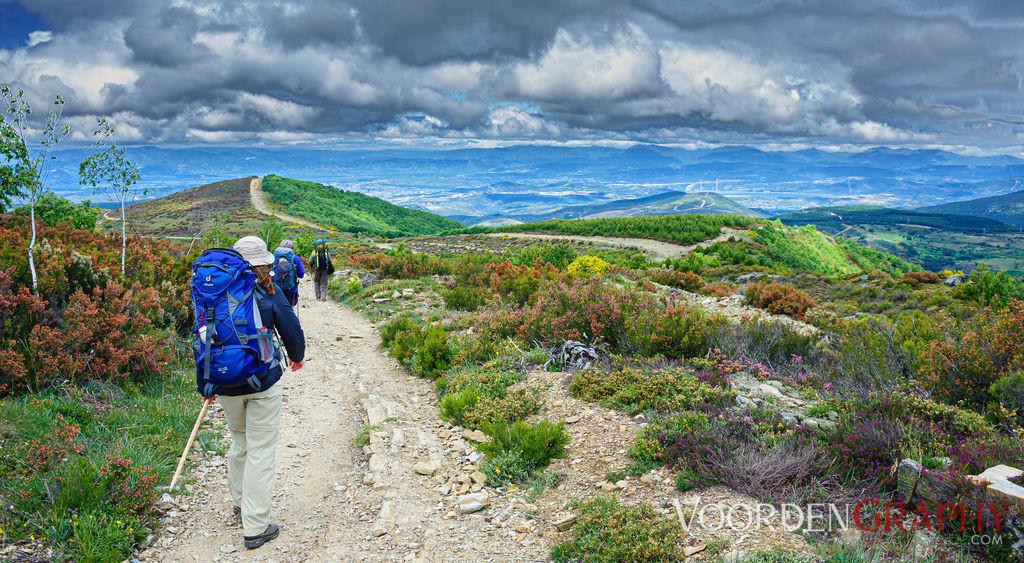Landschaft / Camino Francés
