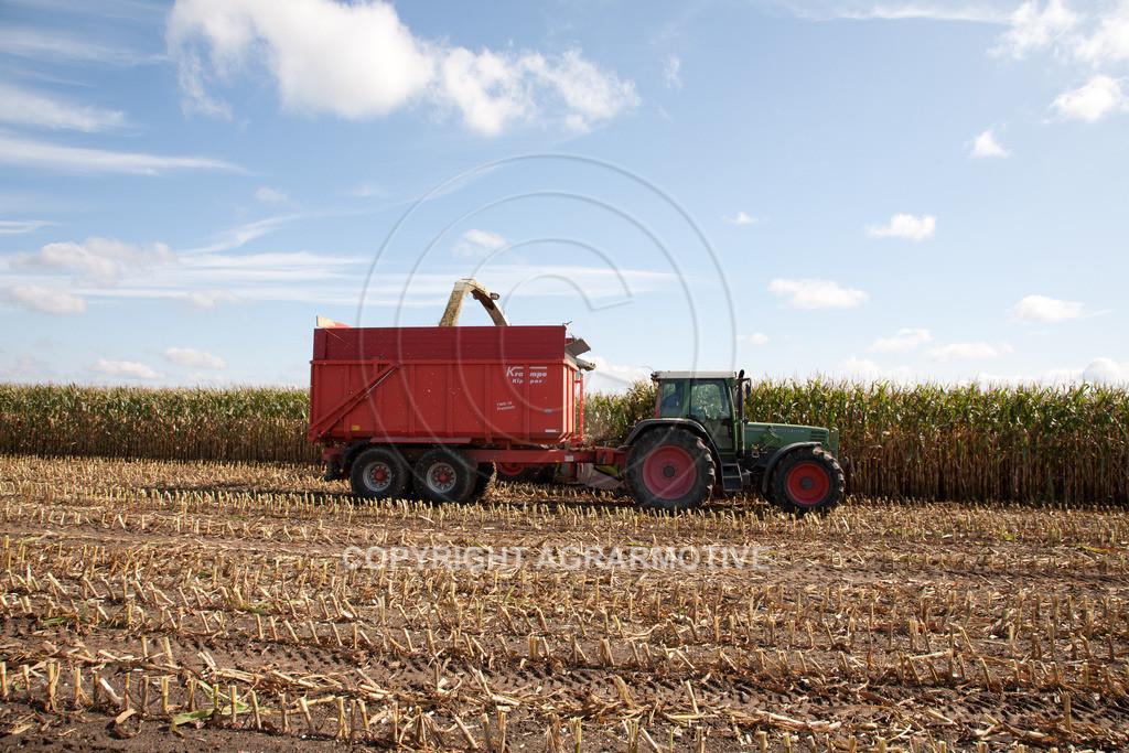 20080914-IMG_8975 | Silomais wird gehäckselt - AGRARFOTO Bilder aus der Landwirtschaft