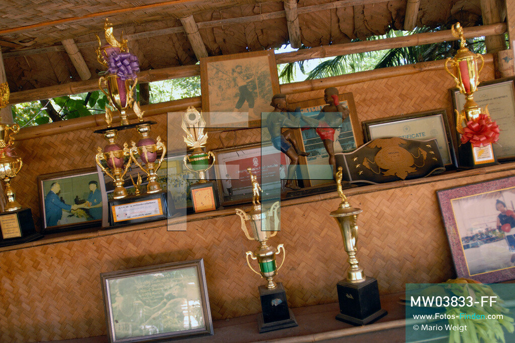 MW03833-FF | Thailand | Goldenes Dreieck | Reportage: Buddhas Ranch im Dschungel | Abt Phra Khru Bah Nuachai Kosito war ein bekannter Thaiboxer, bevor er Mönch wurde. Eine Sammlung von Pokalen, Fotos und Auszeichnungen aus dieser Zeit.   ** Feindaten bitte anfragen bei Mario Weigt Photography, info@asia-stories.com **