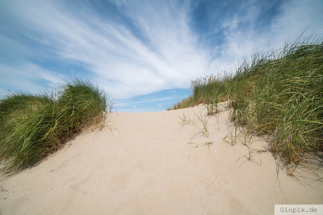 Zeeland | Typische Sanddüne am Sandstrand in Zeeland