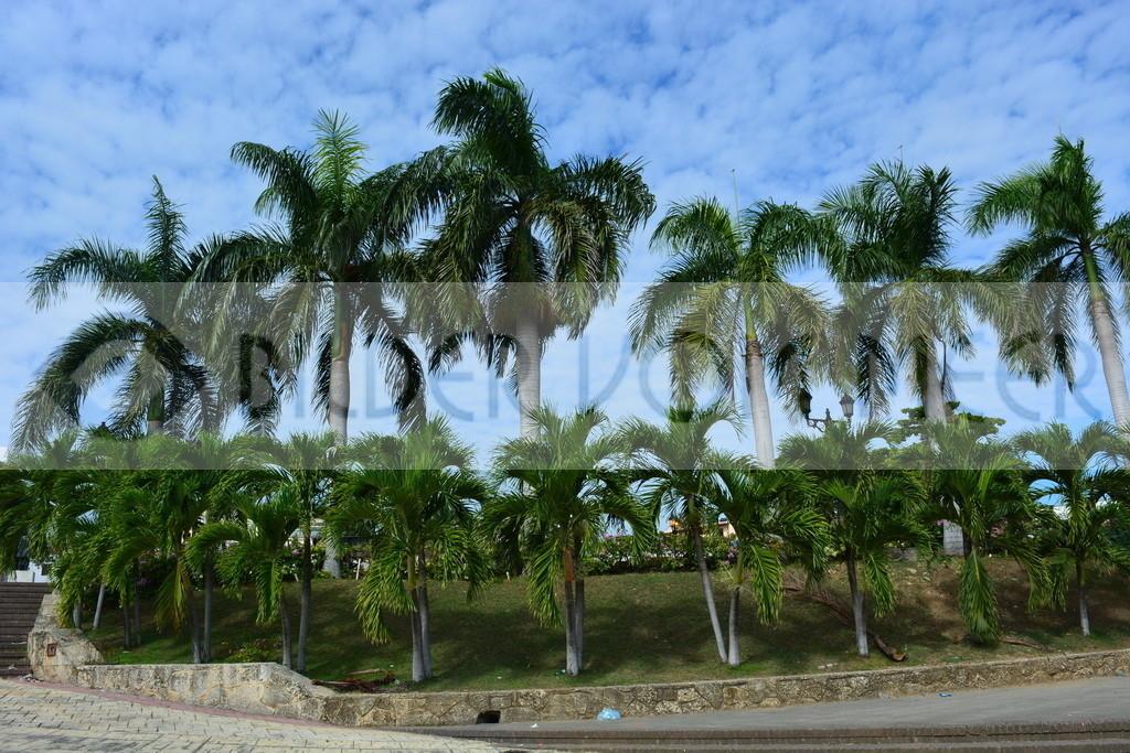 Strand Bilder | Strand Bilder Karibik
