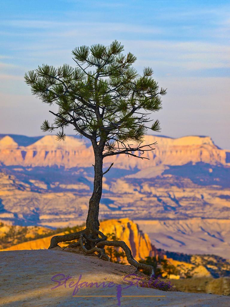 Bryce Canyon beim Sonnenuntergang