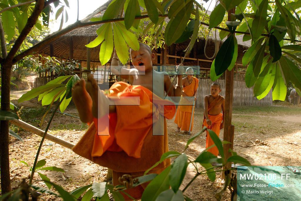 MW02106-FF | Thailand | Goldenes Dreieck | Reportage: Buddhas Ranch im Dschungel | Die jungen Mönche genießen ihre Freizeit im Kloster.  ** Feindaten bitte anfragen bei Mario Weigt Photography, info@asia-stories.com **