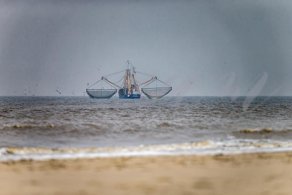 Krabbenkutter | Krabbenboot auf der Nordsee