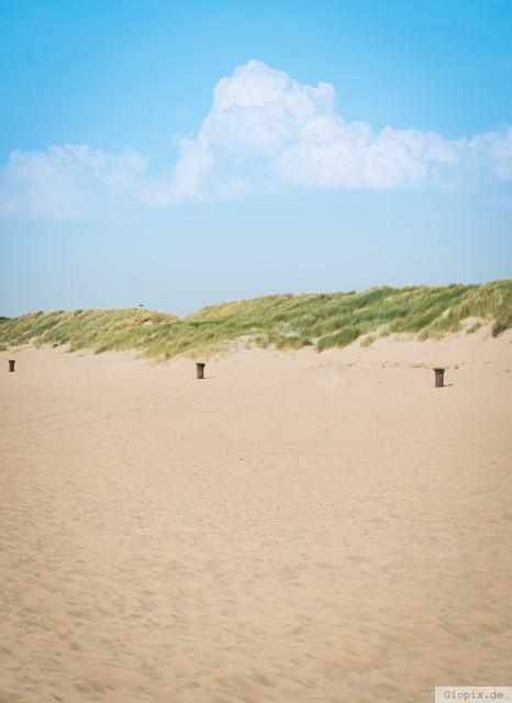 Dünen bei Renesse | Sanddünen am Strand von Renesse