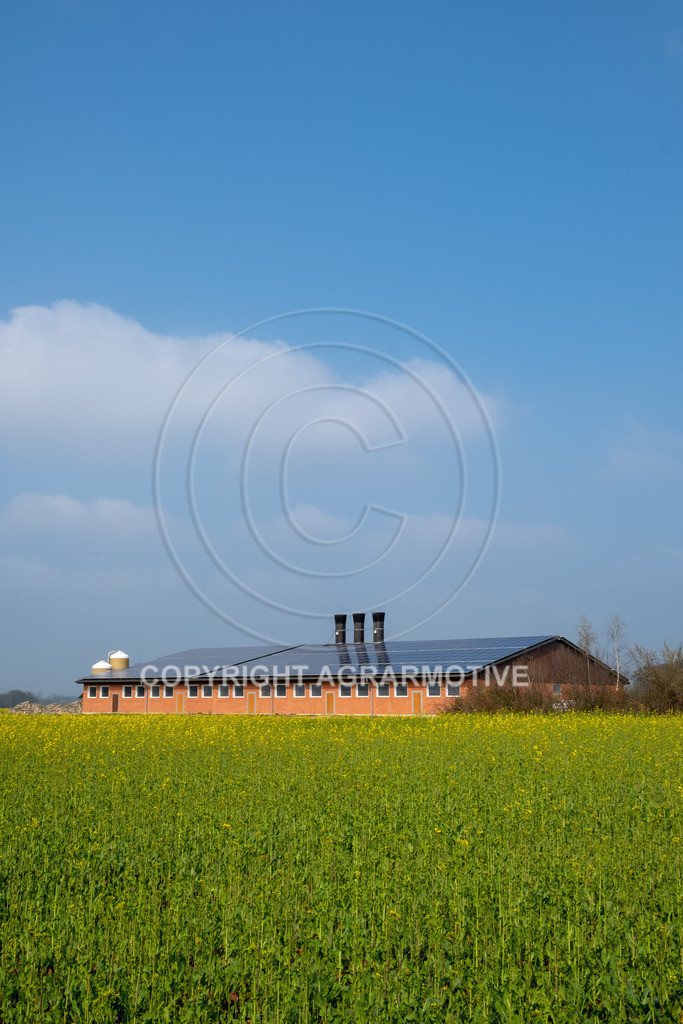 20190406-DSCF2060 | Neubau Schweinestall