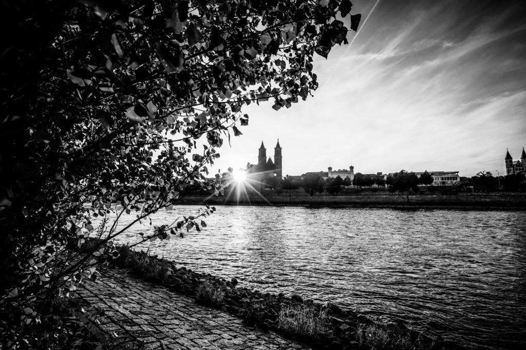 Magdeburg Stadt (48)sw