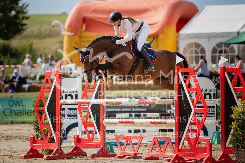 190801_BST_Springpferde-M_5-7J-419 | Braker Sommerturnier 2019 Springpferdeprüfung Kl. M* 5-7jährige Pferde