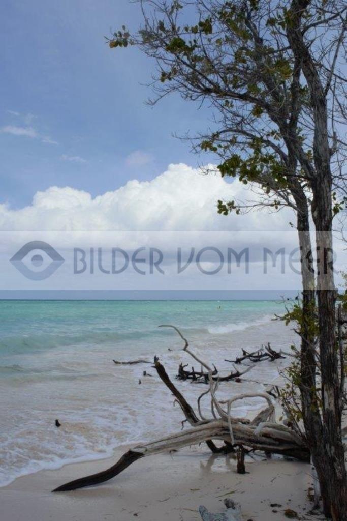 Strand Bilder vom Meer   Strandbilder von Kuba