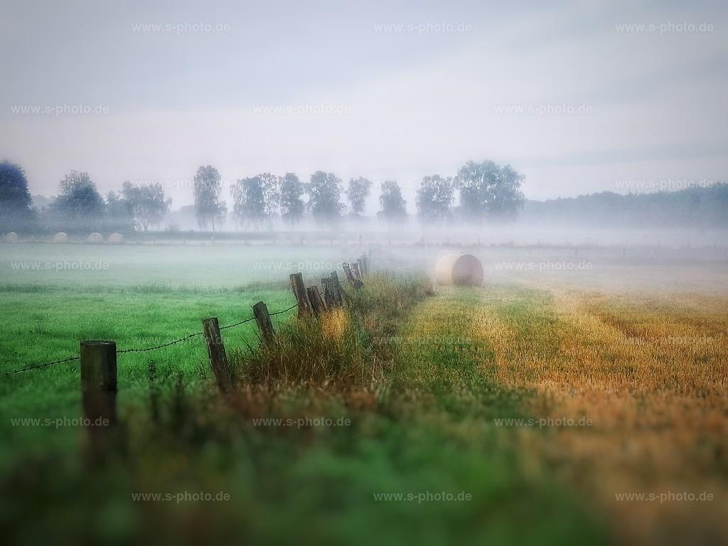 Am Moor | Raakmoor