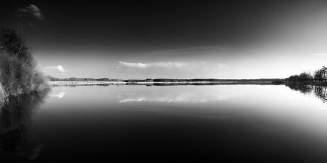 Im Spiegel | Spiegelung im Wasser im Naturschutzgebiet Niederspree in schwarz-weiß