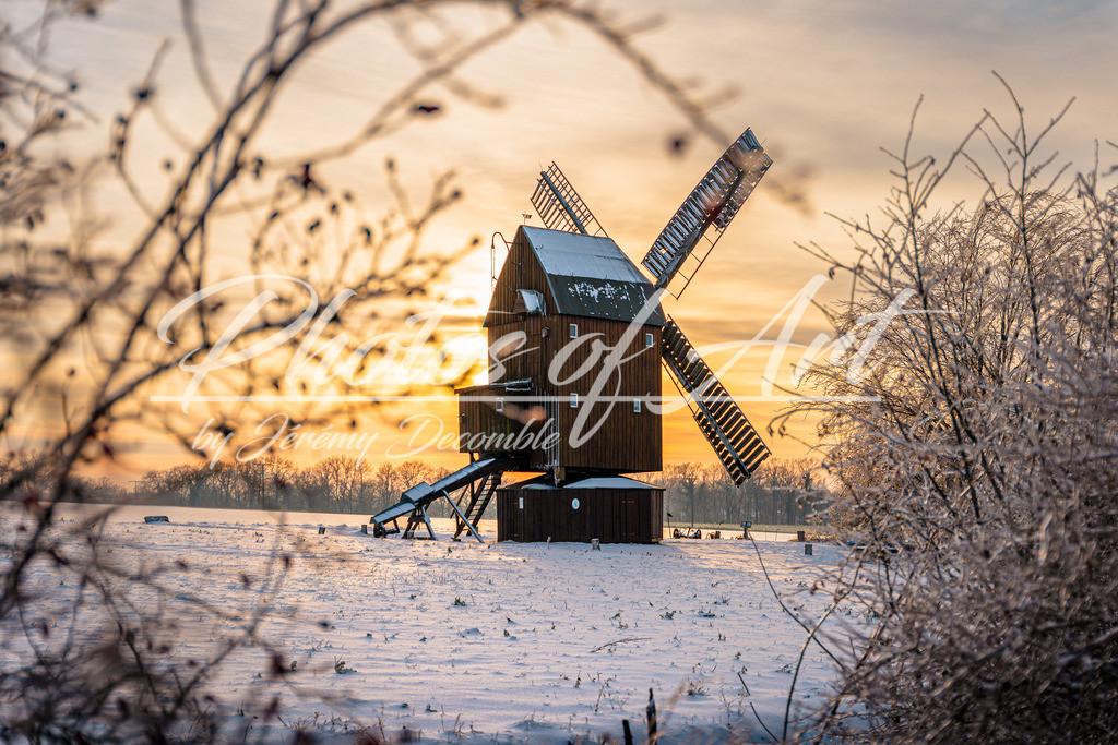 WIndmühle Abbenrode