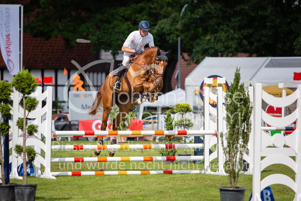 190719_LC_SprPf-A-021   Lopshorn Classics 2019 Springpferdeprüfung Kl. A** 4-5 jährige Pferde