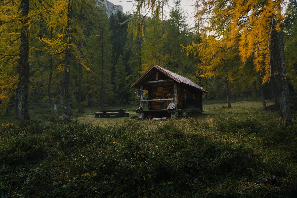Kein Lebkuchenhaus | Kein Lebkuchenhaus aber dennoch eine märchenhafte Hütte umgeben von herbstlichen Lerchen.