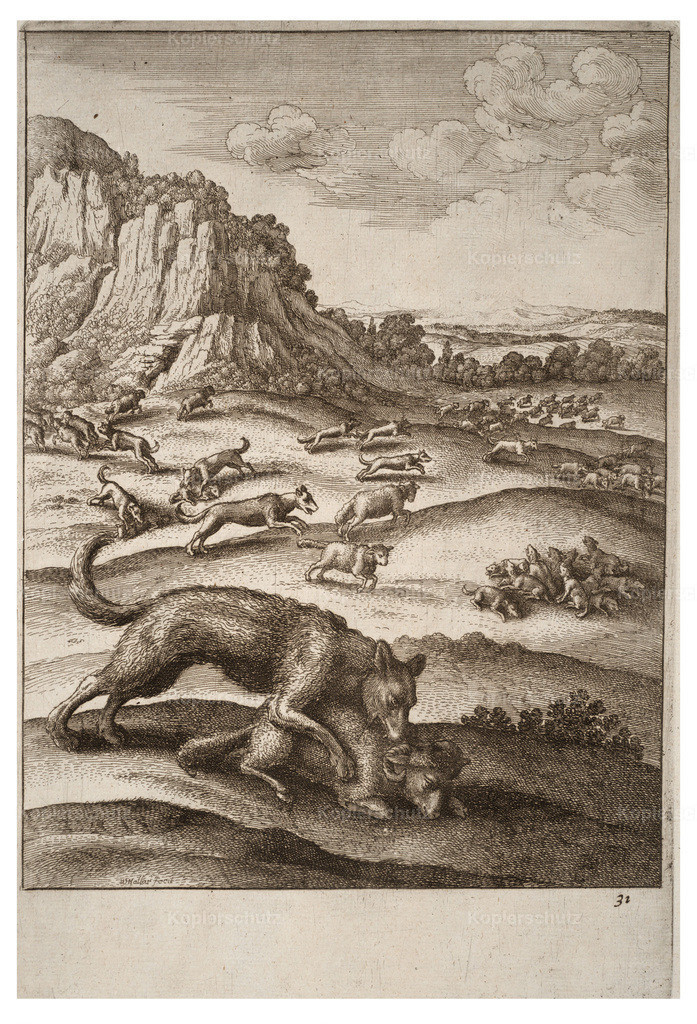 Wenceslas_Hollar_-_The_wolves_and_the_sheep_2
