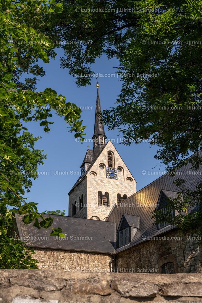 10049-11017 - Pabstorf _ Gemeinde Huy | max. Auflösung 8256 x 5504