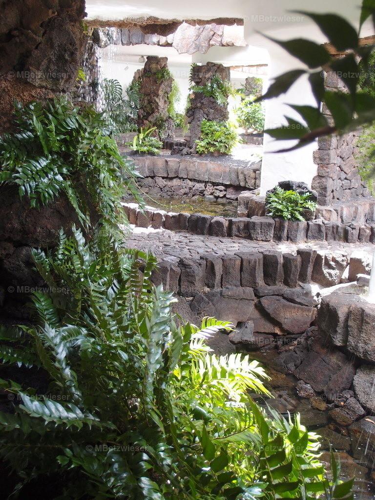 P5050895 | Wassergarten