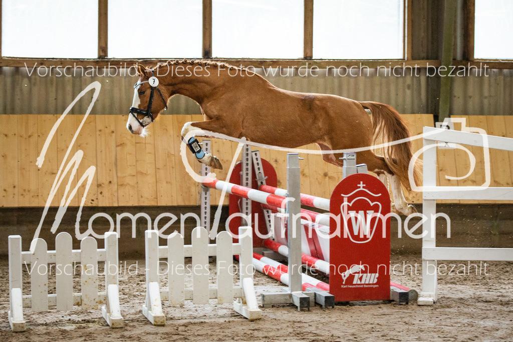 Freispringen-Pony-3j-35