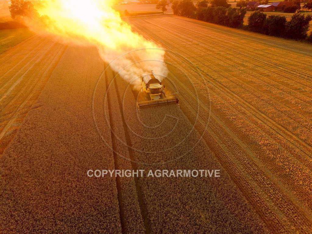 20160815-DJI_0484 | Weizenernte beim Sonnenuntergang - AGRARMOTIVE