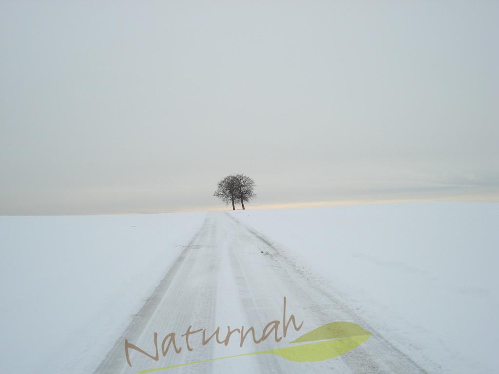 Zweisamkeit im Winter