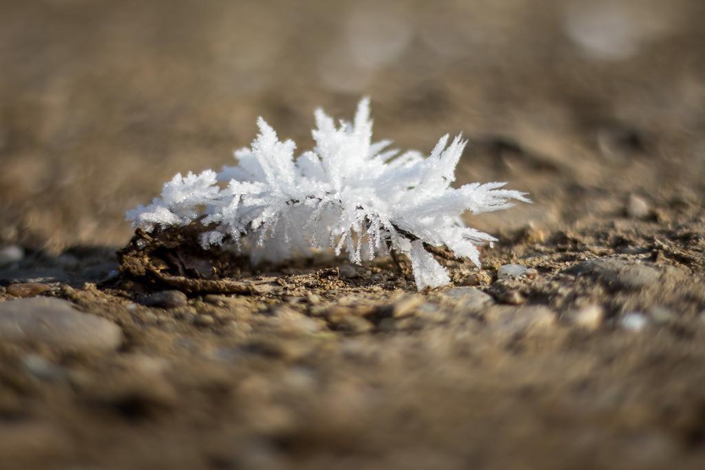 Eiskristalle am Boden