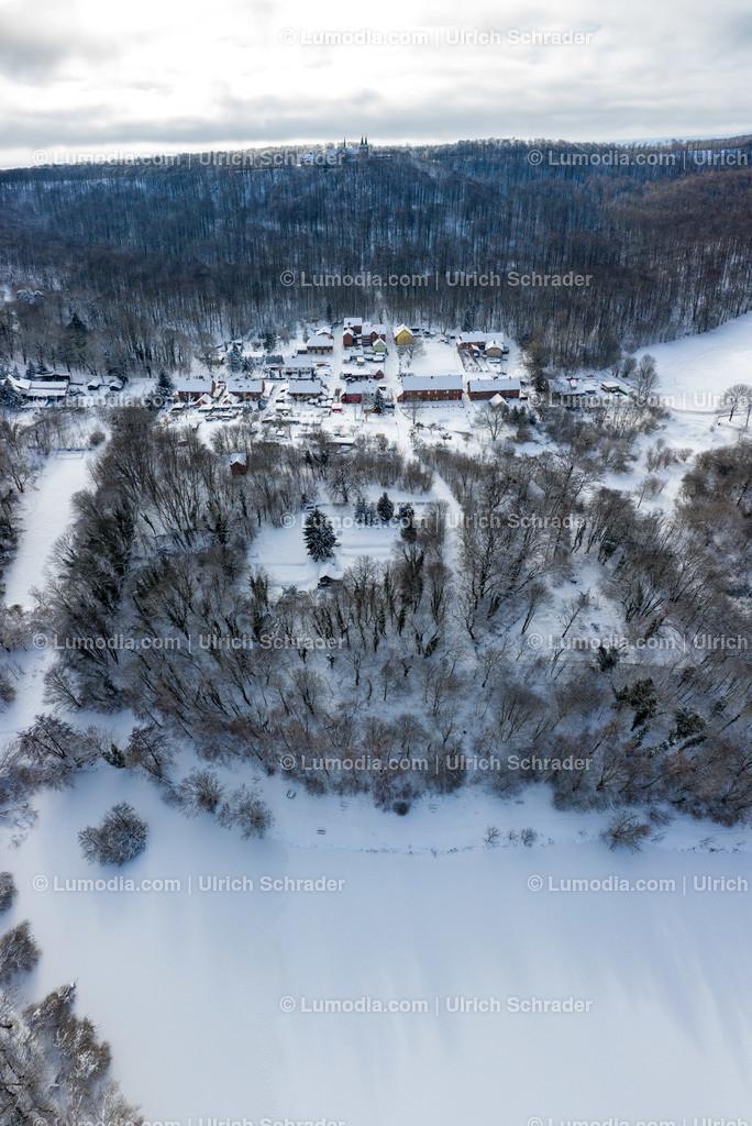 10049-51327 - Winter im Huy _ Röderhofer Teich
