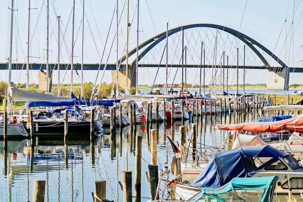 Fehmarnsundbrücke  | Blick vom Hafen auf die fehmarnsundbrücke