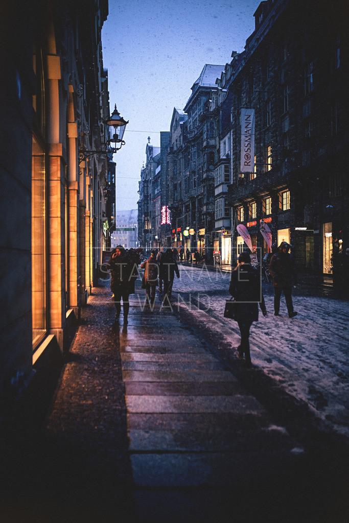 Winter Schnee Leipzig  (11)