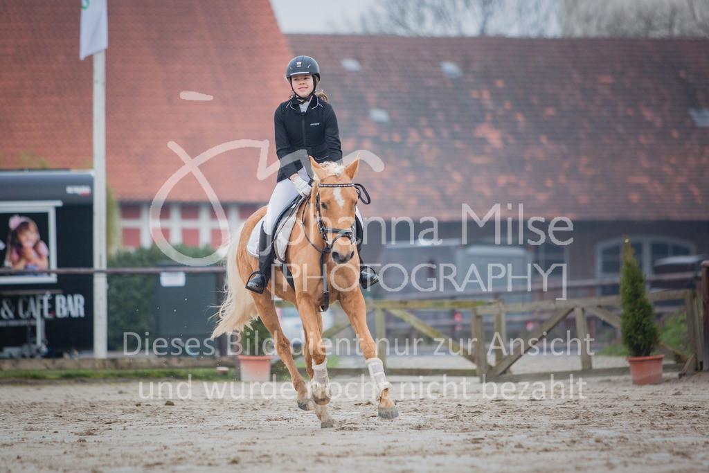 190406_Frühlingsfest_StilE-026 | Frühlingsfest der Pferde 2019, von Lützow Herford, Stil-WB mit erlaubter Zeit