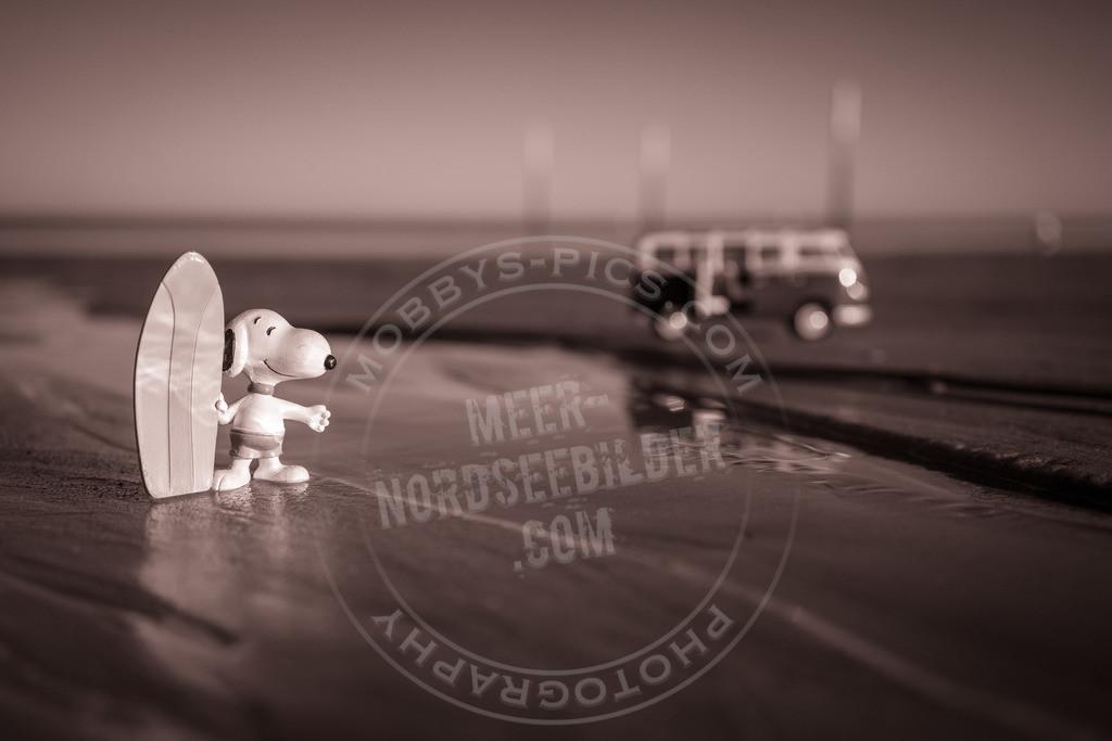 _DSC3358-2 | mobbys-pics.com fotograf st. peter-ording