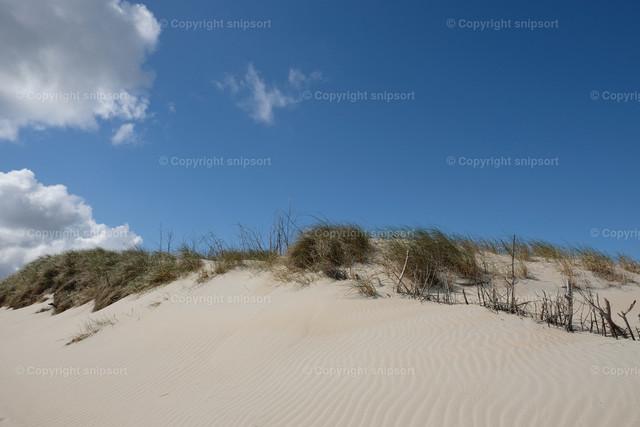 Weiße Sanddünen auf Norderney | Weiße Sanddünen auf der norddeutschen Insel Norderney