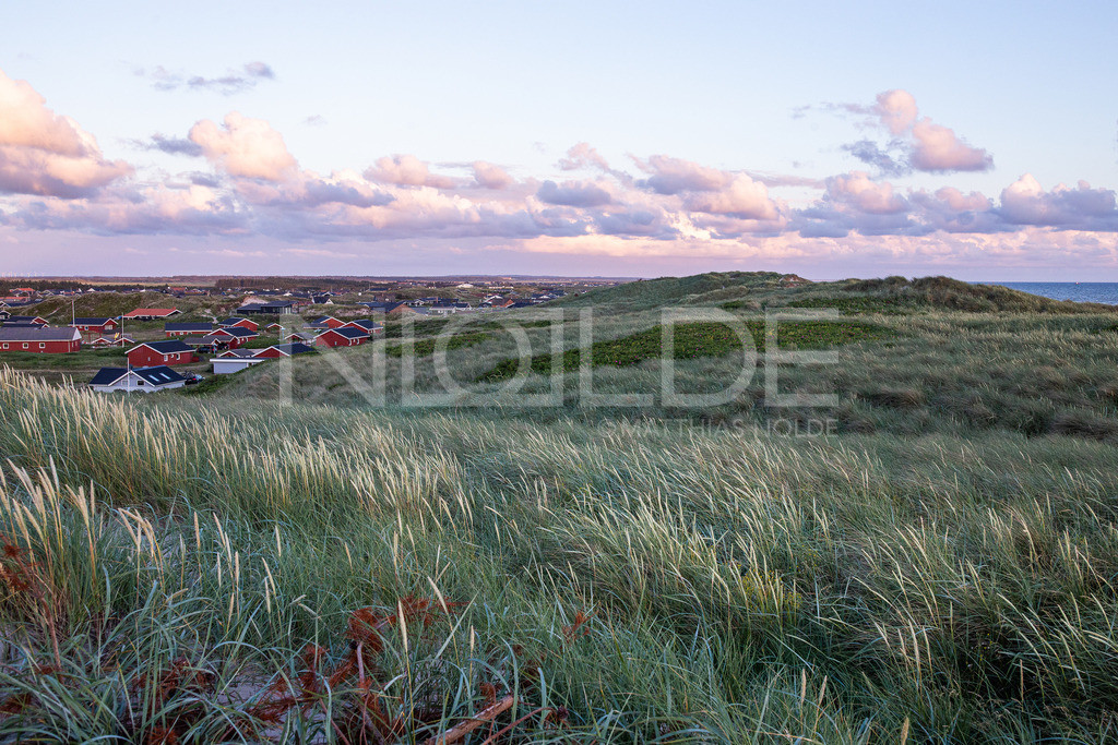 Abens in den Dünen bei Bjerregard | Sonnenuntergang bei Hvidesande im Norden Dänemarks