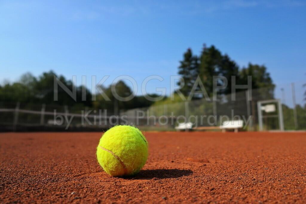 Tennisball | Tennisball auf demTennisplatz.