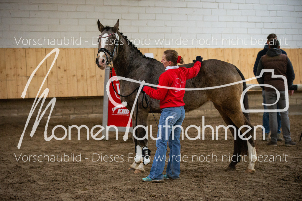 Freispringen-Pony-3j-32
