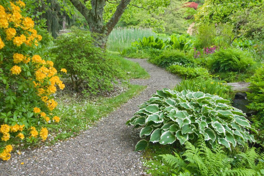 Lebensweg 06 | Gartenpfad Mount Usher Gardens, Ashford, Irland