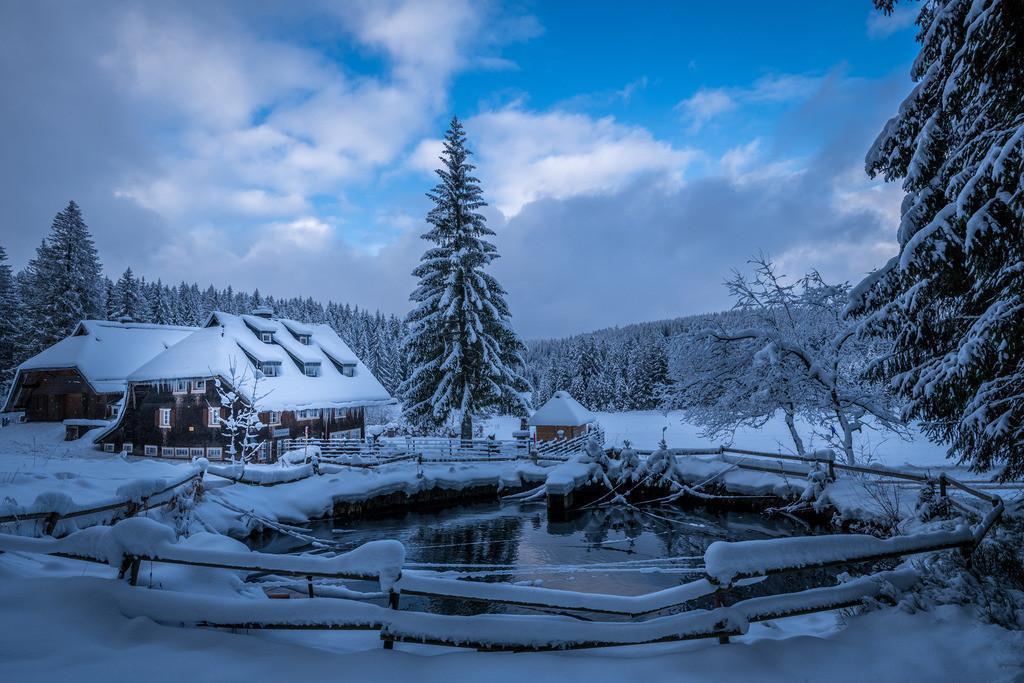Winterlandschaft   Kleiner Löschweiher beim Schönwälder Küferhäusle