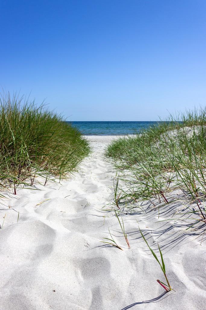 Strand in Kronsgaard | Weg an den Strand in Kronsgaard