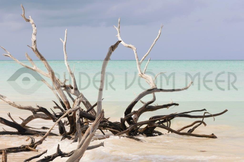 Fotoausstellung Bilder vom Meer | Strandbilder der kubanischen Insel Cayo Jutías