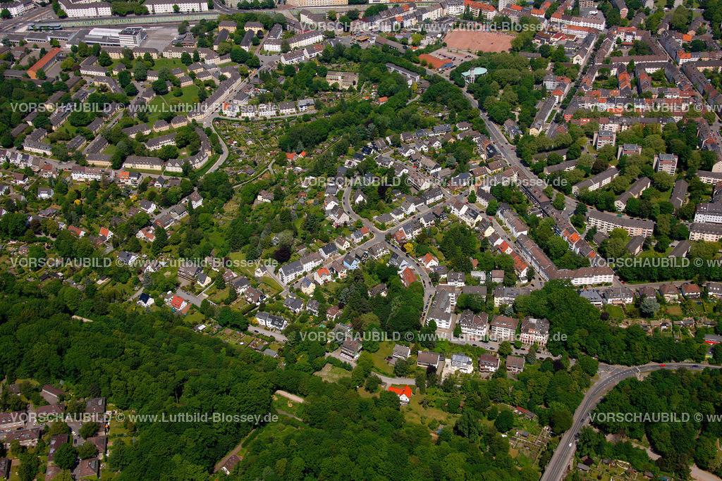 ES10058263 | Am Muehlenbach,  Essen, Ruhrgebiet, Nordrhein-Westfalen, Germany, Europa, Foto: hans@blossey.eu, 29.05.2010