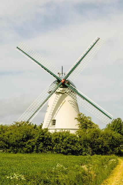 Windmühle Betty | max. Größe bei 200dpi = 50x35cm
