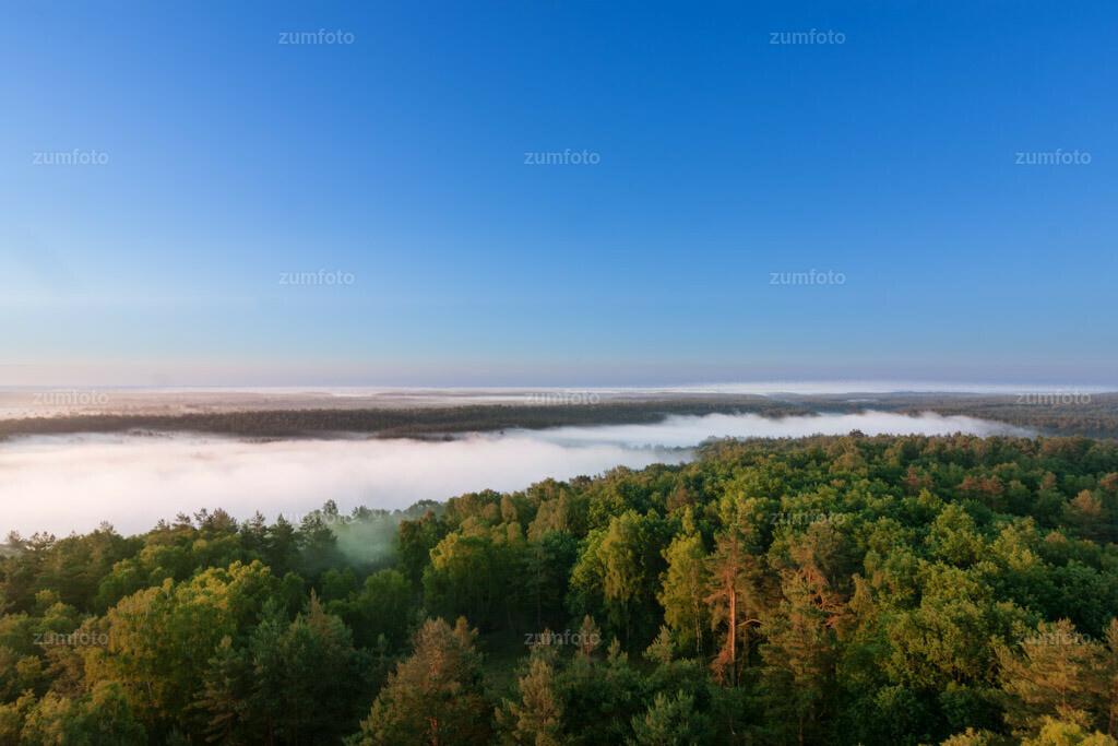 0-110602_0411-4704 | Blick über den großen und kleinen Zillmannsee mit dem Müritz Nationalpark im Nebel. --Dateigröße 3888 x 2592 Pixel--