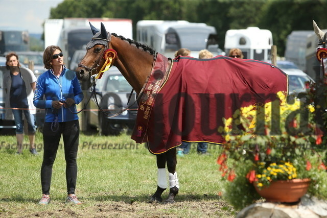 Lußhof_Championatsehrung_5j._DSP-Pferde_VS (9)