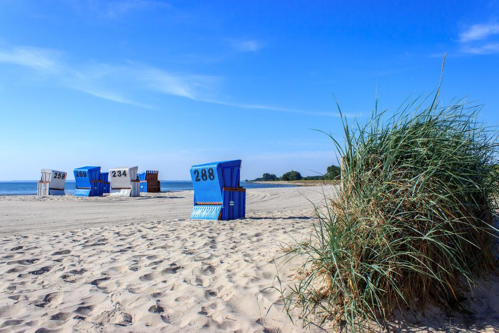 Strandkörbe an der Ostsee   Strandkörbe am Strand in Damp