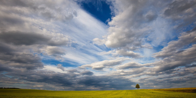 Einsam | Einsamer Baum vor dynamischer Wolkenkulisse