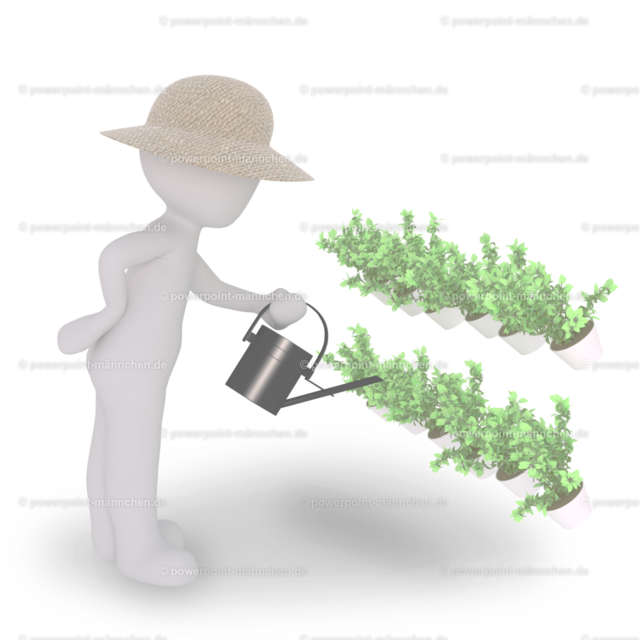 watering the plants with a watering can
