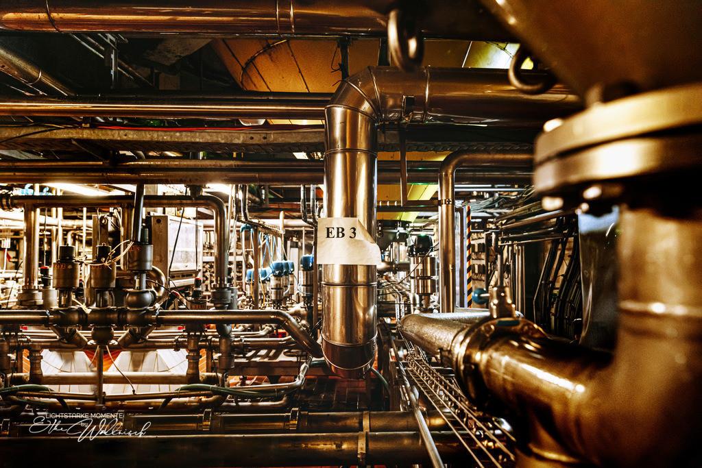 Brauereiperspektiven | Besuch in einer Brauerei
