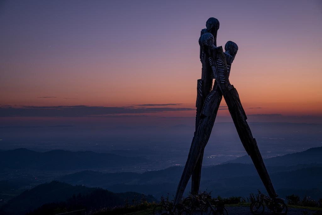 Lothardenkmal   Denkmal an den Sturm Lothar, auf dem Gengenbach Siedigkopf im Sonnenuntergang