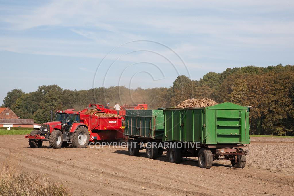 20110929-IMG_5826 | Ernte auf einem Kartoffelfeld - AGRARBILDER