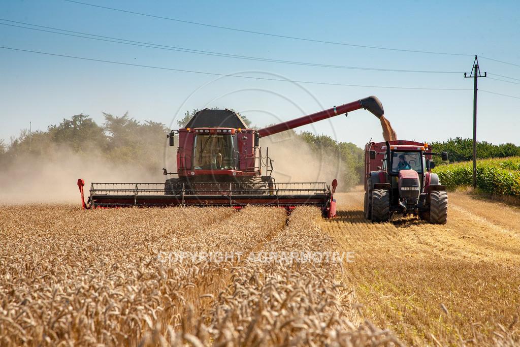 20110804_0333 | Mähdrescher bei der Weizenernte